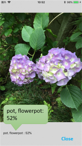 the example picture of 'flowerpot 52%'