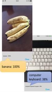 the example pictures of 'banana 100%' and 'computer keyboard '38%'